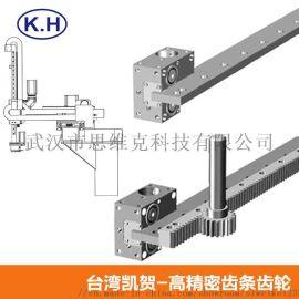 台湾重载导轨齿条齿轮用于机械人  轴的直线传导