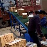 平板式皮帶裝車機桶裝水搬運帶式傳輸機食品包裝傳輸線