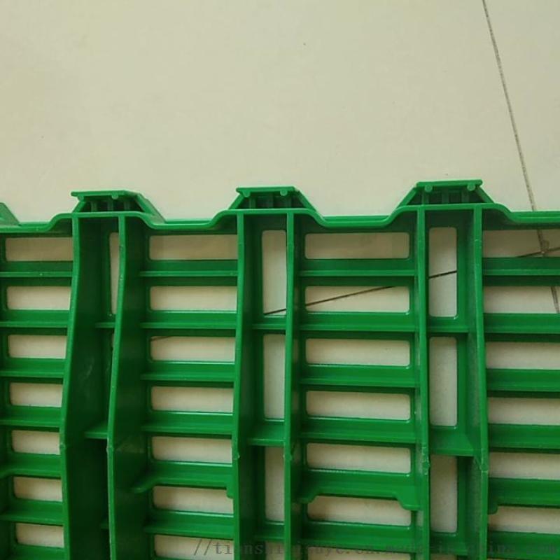 養羊塑料漏糞板羊用漏糞牀塑料羊牀廠家