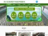 資陽網站建設