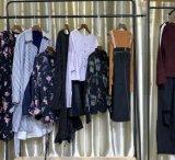 鳥家系列20春裝 品牌折扣女裝批發 庫存尾貨走份實體電商貨源