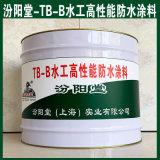 TB-B水工高性能防水涂料、良好的防水性