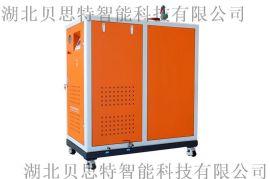 贝思特200/300/500KG智能燃油(燃气)蒸汽发生器