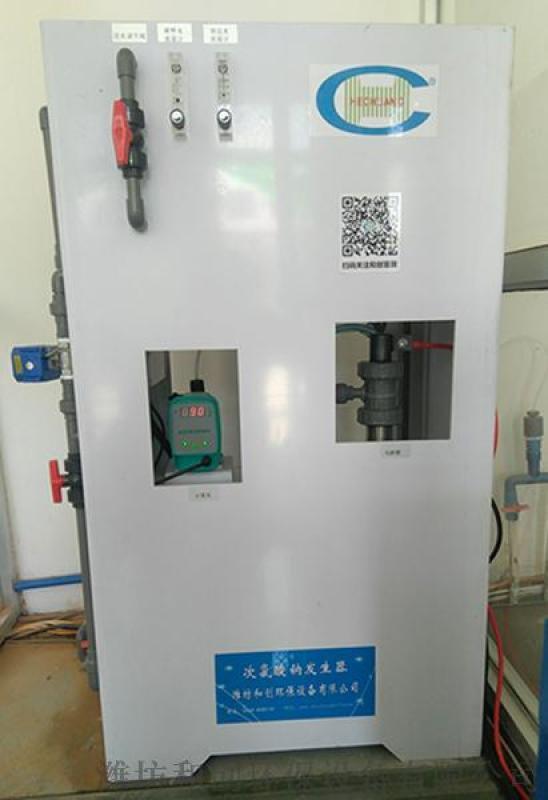 單村供水消毒設備/電解食鹽次氯酸鈉發生器