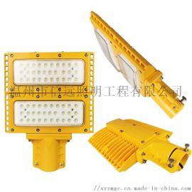 LED路灯防爆道路泛光灯户外照明