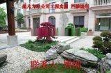 苏州造型红花檵木桩 红花继木树桩 庭院苗木采购基地