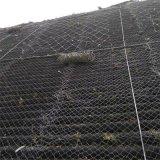 邊坡防護網 高速路 廠家 主動防護網型號