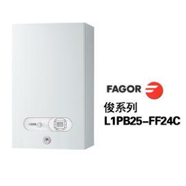 欧洲原装进口法格(FAGOR)燃气采暖炉(俊系列)