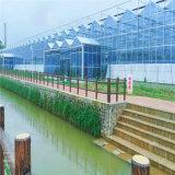 玻璃智慧溫室大棚 廠家直銷 質量保證