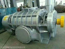 SR-T150山东**罗茨鼓风机厂家供应