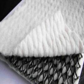 三維復合排水網6.3mm厚應用效果