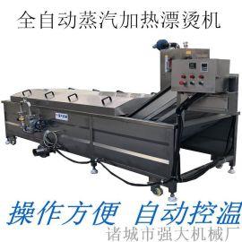 强大全自动蔬菜蒸煮漂烫机 菠菜杀青漂烫机