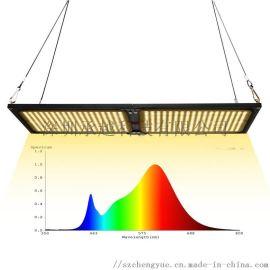 承越全光谱240W量子板led补光灯温室植物生长灯