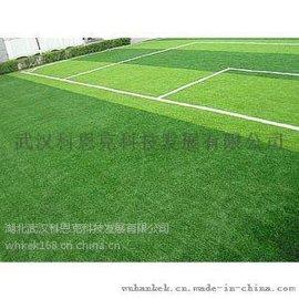 运动场草坪铺设 质量好 价格优惠