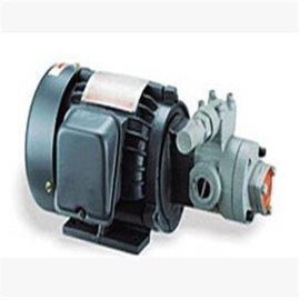 台湾志观马达油泵电机1/4HP+AM6泵头 电压220V/3