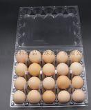厂家直销鸡蛋托,生鲜托,三明治盒