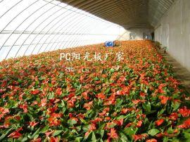 威海雙層透明陽光板價格,蔬菜大棚專用防滴露陽光板廠家