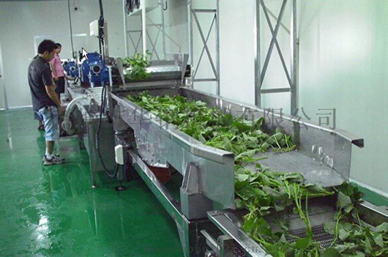 新款蒸汽蔬菜漂燙設備,多功能高壓蔬菜漂燙清洗機圖片