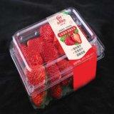 透明PVC不干胶标签/水果商标贴纸/饮料瓶贴彩色PVC不干胶/食品标签