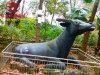 四川動物雕塑廠家,室內室外動物卡通人物雕塑定製