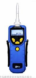 美国华瑞VOCRAE快速检测仪PGM-7380