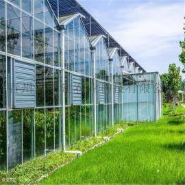 承接玻璃温室设计 玻璃温室大棚工程