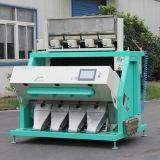 合肥泰禾6SXM大米色選機 彩色CCD色選機 專業分選大米設備