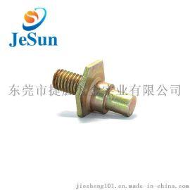 厂家专业生产异型螺丝 铁 不锈钢机螺钉 偏心螺丝 非标定制