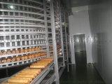 面包漢堡螺旋冷卻塔 面團螺旋醒發塔