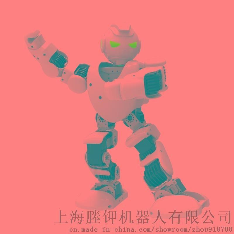 阿尔法人形智能机器人 Alpha 1P 益智编程 教育娱乐 APP蓝牙控制