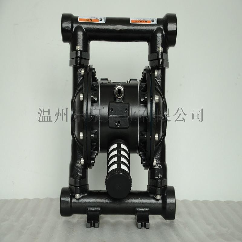 廠家鑄鐵隔膜泵 甌北隔膜泵 新型隔膜泵