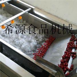 定制性红枣高压清洗机 果蔬清洗设备