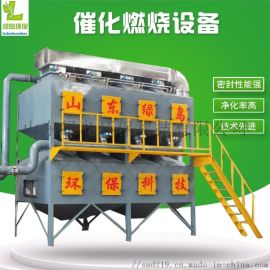 工业废气处理技术方案催化燃烧设备山东绿岛