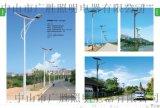 廣順牌道路照明太陽能燈GWD---LDS40W
