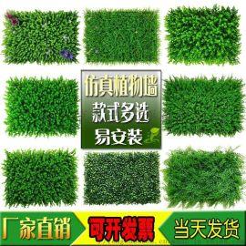 人造草坪草外内墙门头招牌装饰背景绿植