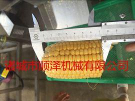 甘肃玉米切段机 玉米切块机 玉米分切机厂家