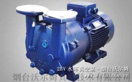 2BV水环真空泵_水环式真空泵/液环真空泵压缩机