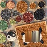 厂家直销 小颗粒砾石 精美机制水洗石 多色洗米石