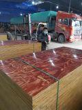 工程用木模板建筑8层优质覆膜板