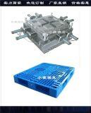 中国塑胶注射模具厂家 双层塑胶托盘模具厂