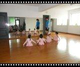 天津专业安装玻璃镜子舞蹈镜子厂家