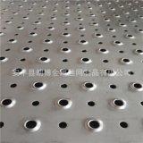 衝孔網生產廠家 魚眼孔防滑板衝孔 鐵板防護衝孔網 圓孔翻邊孔板