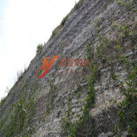 主动防护网 山体滑坡主动防护网 边坡主动网