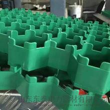 5公分塑料植草格 厂家直销