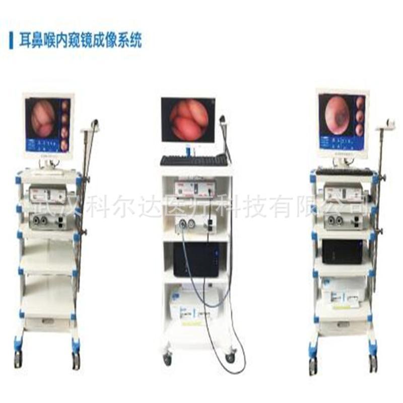 耳鼻喉內窺鏡成像系統 鼻內鏡檢查系統