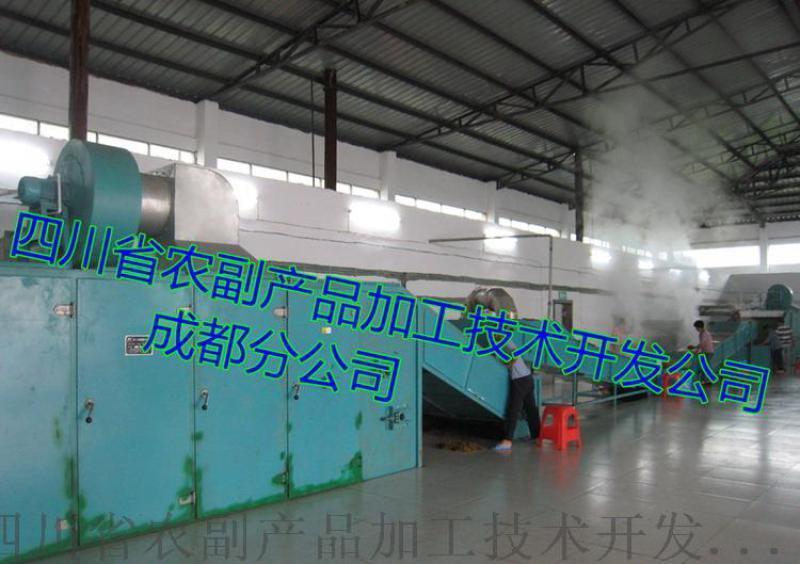 脱水马铃薯丁生产线(木山GSJM)