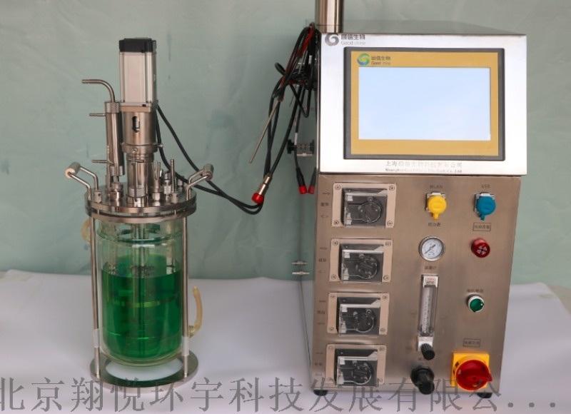5L玻璃發酵罐