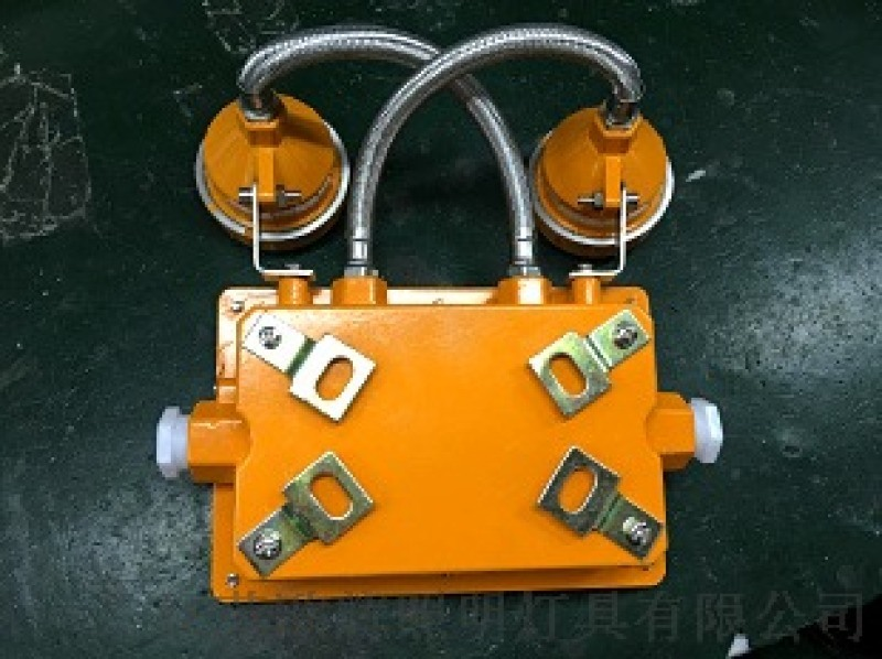 BFC8185,AC220v消防应急防爆灯两头BFC8185,BFC8185国标双头应急灯