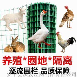 不锈钢电焊网现货 PVC电焊网 墙体保温网1/2