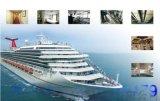 什麼是A60船用岩棉板 什麼是船級社證書